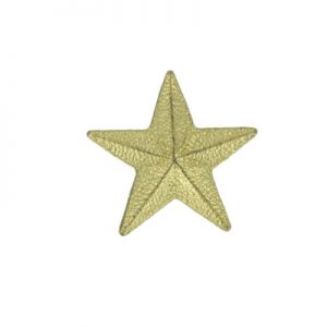 STAR CHENILLE Lapel PIN GOLD